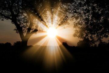 Solary czy panele fotowoltaiczne Co wybrać przy termomodernizacji